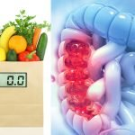 Healthy Colon Is Imperative For Keeping The Body Healthy And Detoxified